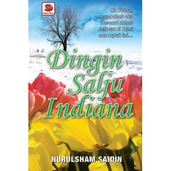 NOVEL DINGIN SALJU INDIANA NURULSHAM SAIDIN (SINOPSIS & REVIEW)